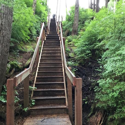 Climbing sitka steps