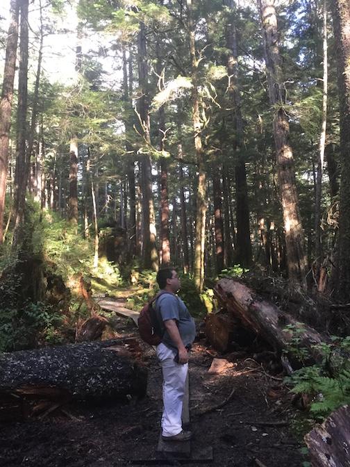 IRR Trail 3