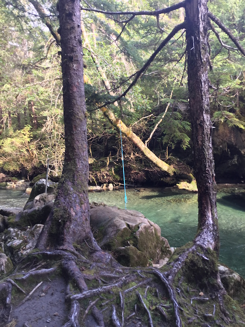 Indian River Trail_Rope Swing_09.25.2015